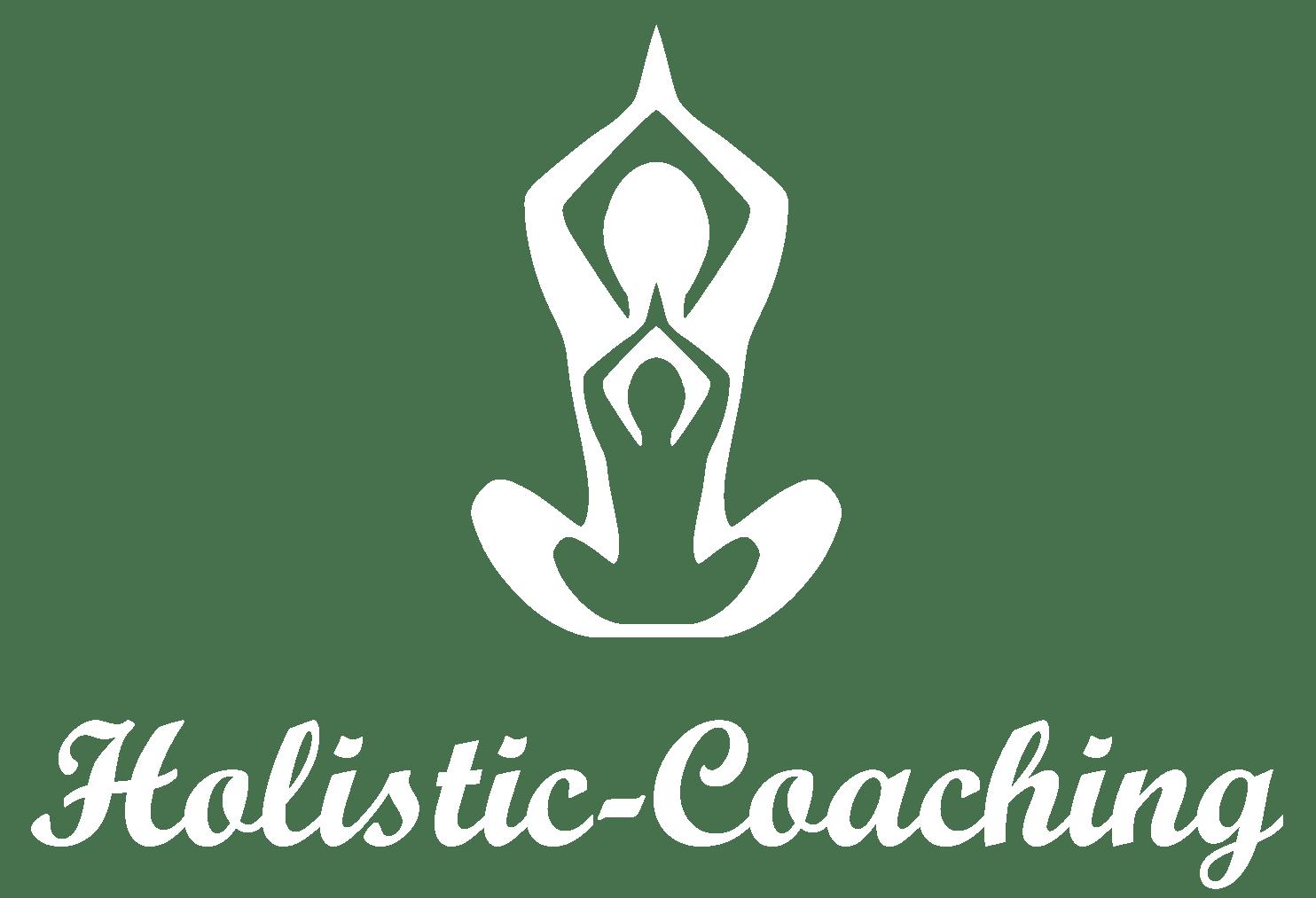 Coach sportif domicile toulouse vincent bonis holistic coaching remise en forme